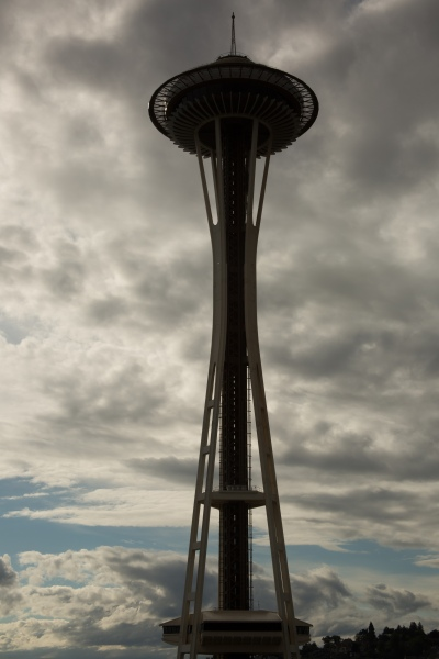 Needle (1 of 1).jpg