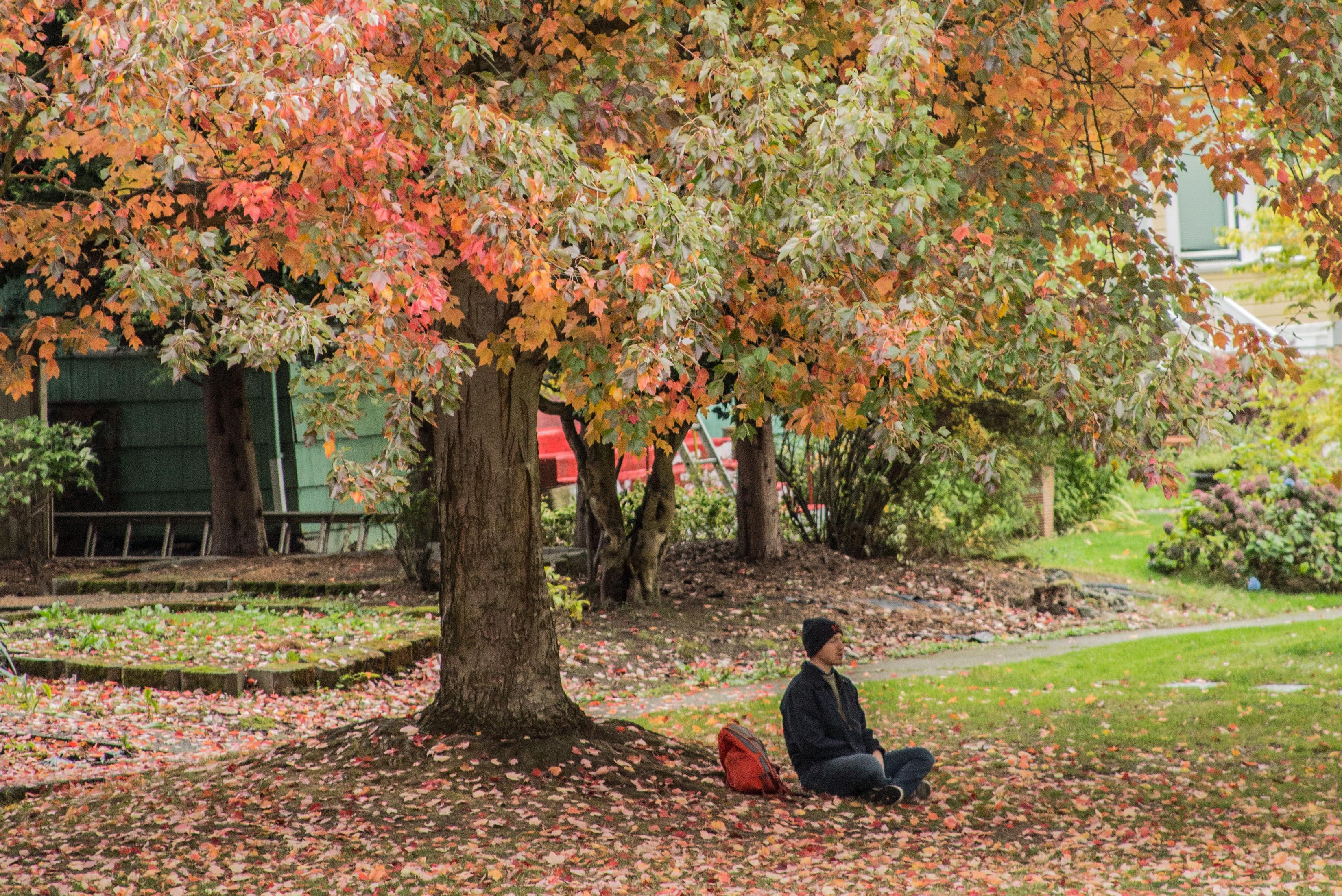 Meditation (1 of 1).jpg