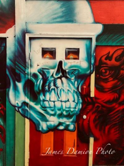 Skulls (1 of 1)